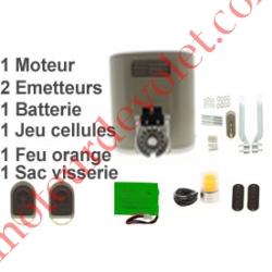 Elixo 500 3Sio Pack Conf 24v (1Mot,1Arm & 1Réc Int, 2ém 4cx,1J Cel 1Feu Av Ant Ss Crém)