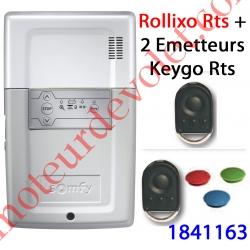 Récepteur Rollixo Rts Avec 2 Télécommandes Keygo Rts