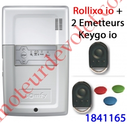Récepteur Rollixo io Avec 2 Télécommandes Keygo io
