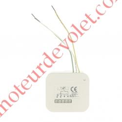 Micro Récepteur éclairage intérieur Hz ou Rts Puissance Maxi 500 w ip20