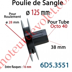 Poulie de Sangle ø 125 Emb Octo 40 Lg 38 Entre Flasque 16 pr Roulement ø 28 mm