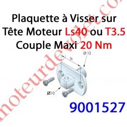 Support Moteur LS 40 ou T 3.5 Carré de 10 Percé pour Goupille Avec 2 vis Plastite 3,8 x 12 mm