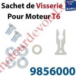 Sachet de Visserie & Rondelle pour Support Moteur T6 en C
