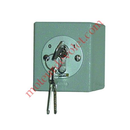 Interrupteur à 2 Contacts à Clés Orion à Position Fixe Applique 16A 230 vca ip54