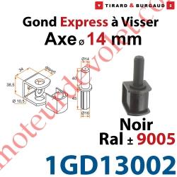 Gond Express à Visser en Acier Axe ø 14 mm en Matériau Composite Noir ± Ral 9005