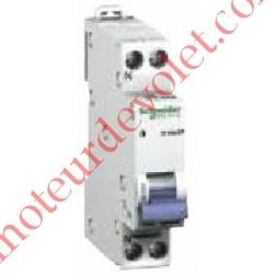 Disjoncteur Magnétothermique D'clic XP 10 A