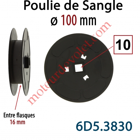 Poulie de Sangle ø 100 mm  Entre Flasques 16 mm Entraînement en Carré de 10 mm