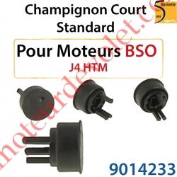 Champignon Court Standard pour Moteur de Bso J4 HTM